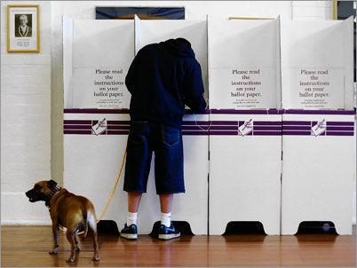 Voting - Australian Style!